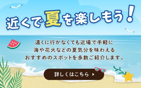 山武の近くで夏を楽しもう!